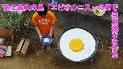 史上最大の鳥「エピオルニス」の卵で目玉焼きを作る_地主恵亮