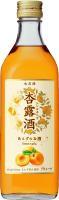 KIRINコラボバイト_「杏露酒」のあんず収穫_41