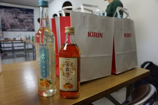 KIRINコラボバイト_「杏露酒」のあんず収穫_35