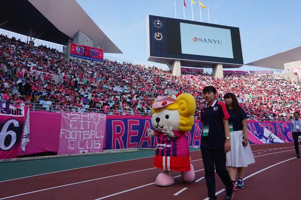 セレッソ大阪の試合サポート_33